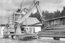 Itä-Saksan metsätyökoneet – Pitkien runkojen käsittelylaitteet